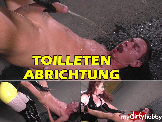 - TOILETTEN ABRICHTUNG