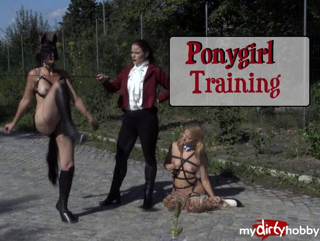 - Ponygirl Training