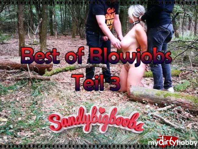 - Best of Blowjobs Teil 3